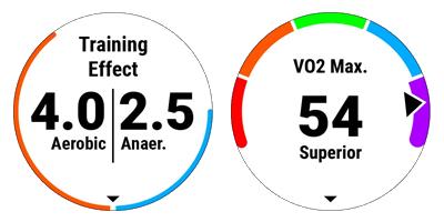 trainning-effect_VO2max